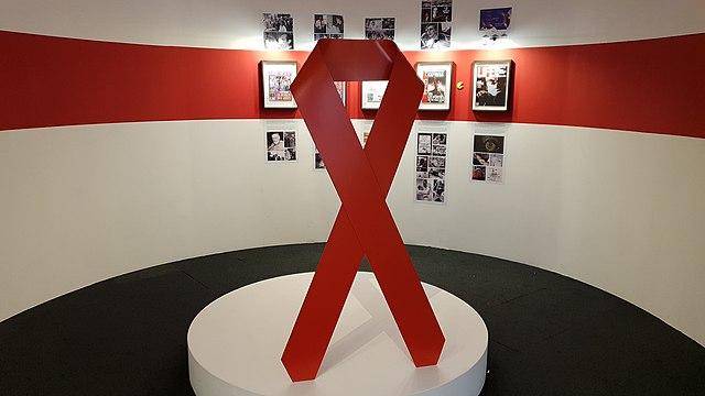 Die Rote Schleife, Symbol der Solidarität mit HIV-Infizierten - Quelle: Wikipedia - Autor: Georges Seguin