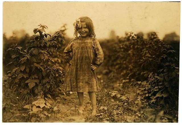 Laura Petty, 6 Jahre alt, Feldarbeiterin, Maryland, 1909 - Lewis Hine, Library of Congress